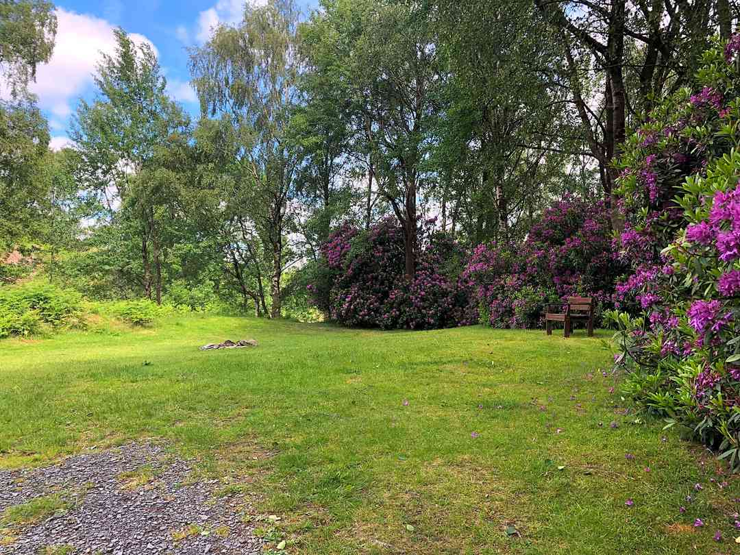 Crake Valley Holiday Park: Pitches surrounded by trees and flowers
