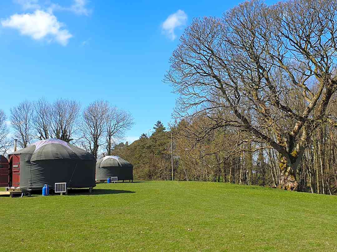 The yurts at Sneck Yeat Farm
