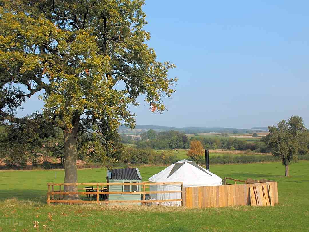 Acorn Yurt: The yurt sits under a lovely oak tree