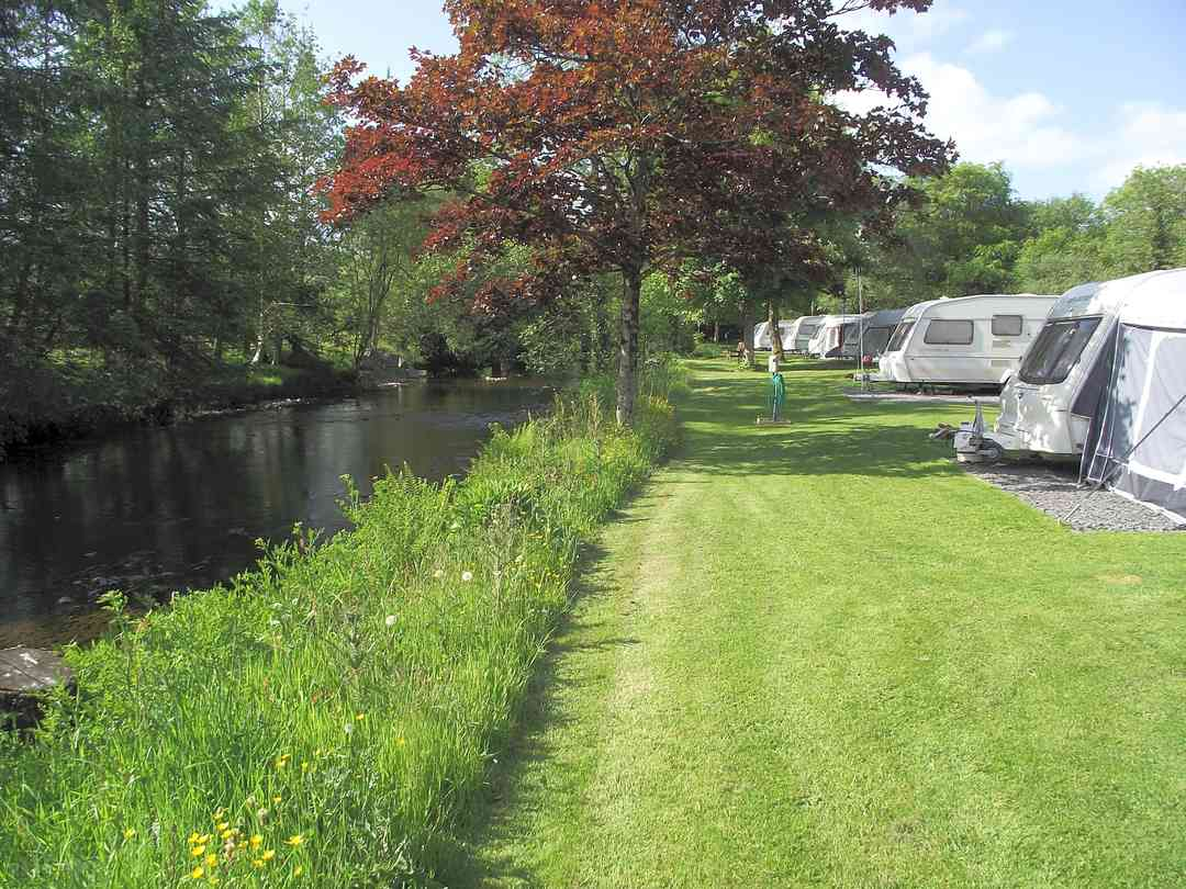 Riverbend Caravan Park: Looking towards the end of the park and the Glyndwr's Way footbridge