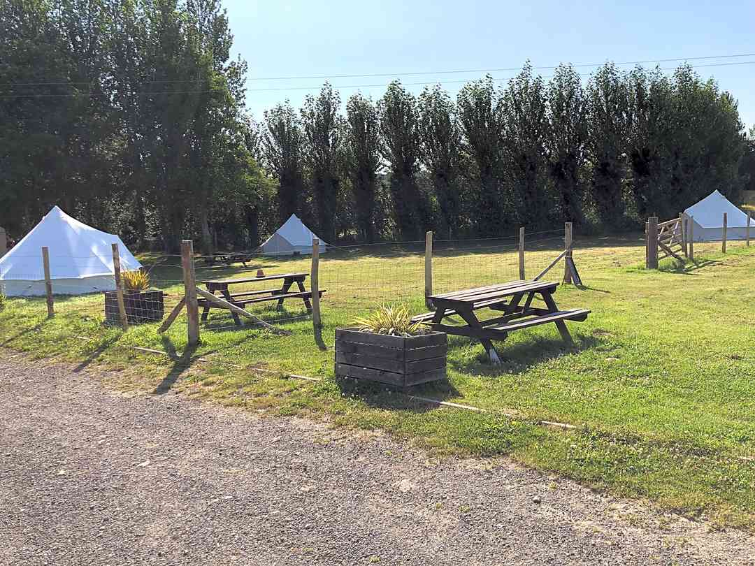 Buckhurst Campsite: The bell tents