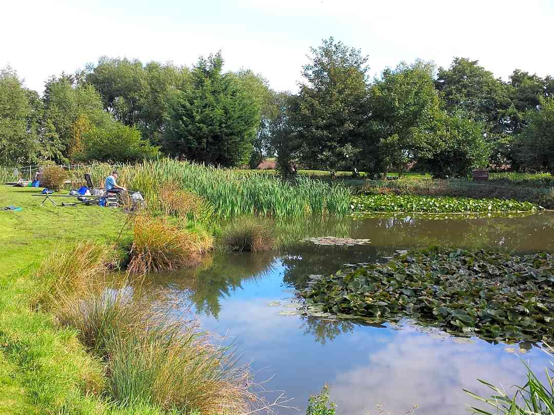 Alvingham Lakes: Monkey lake