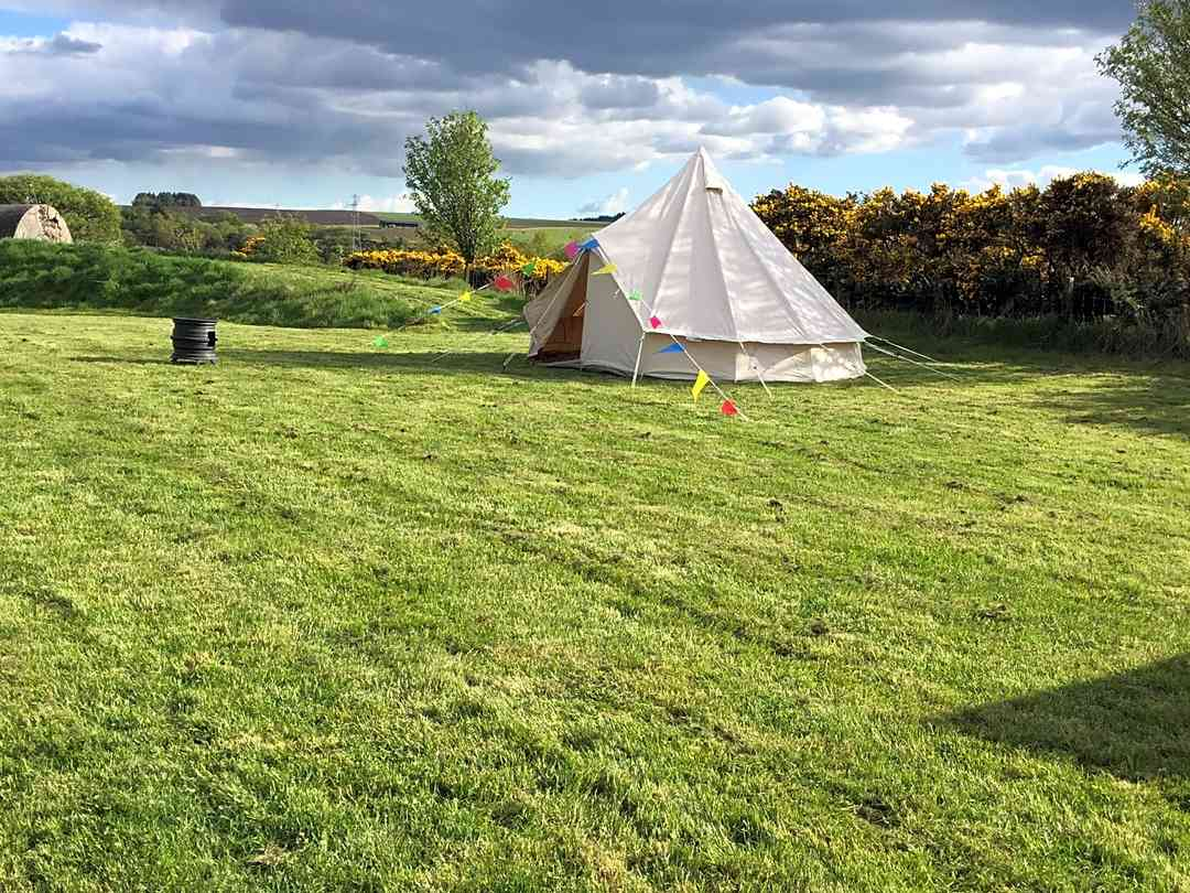 Bonnybridge Eco Camping and Glamping