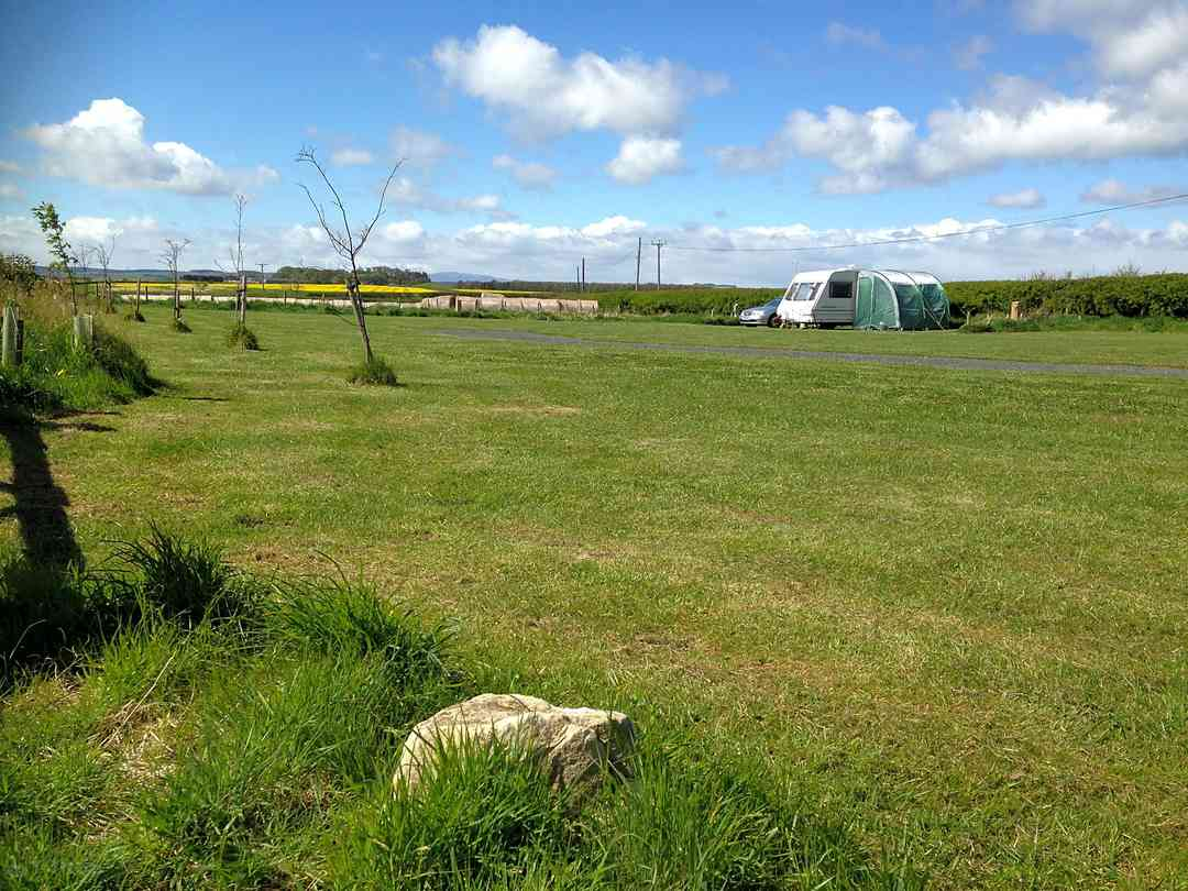 Flat grass pitches
