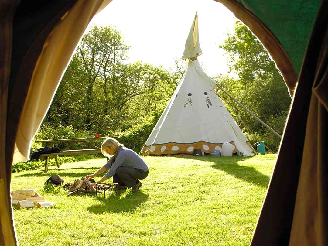 Cornish Tipi Holidays: Morning view from the tipi