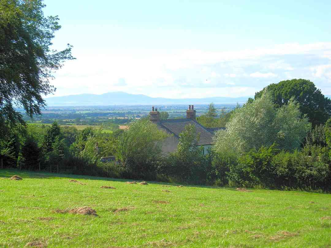 Wallace Lane Farm