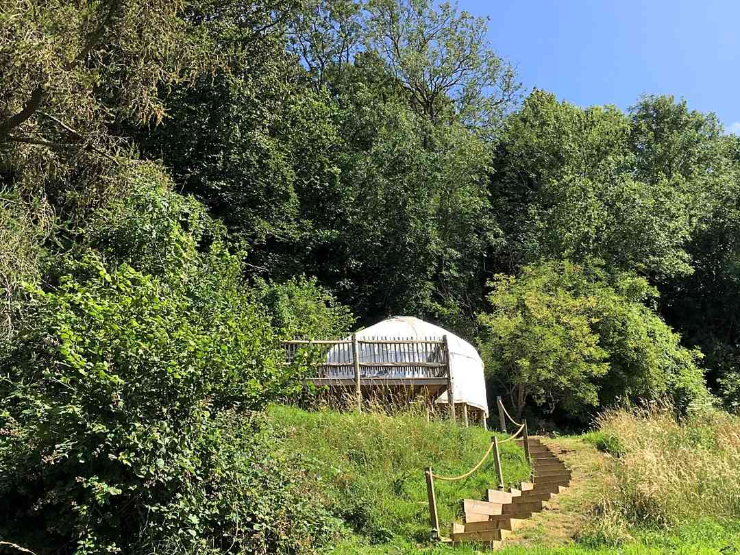 The Teasel Yurts