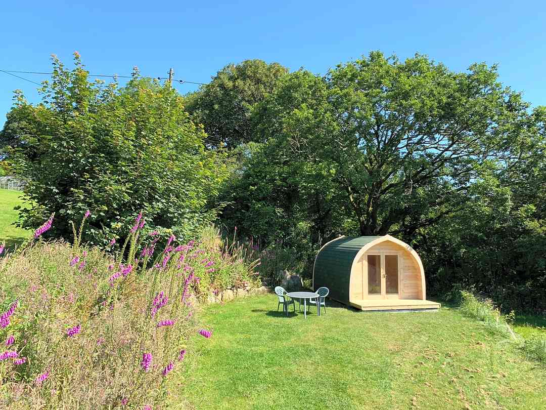 Bodmin Moor Camping: Pod in the spring