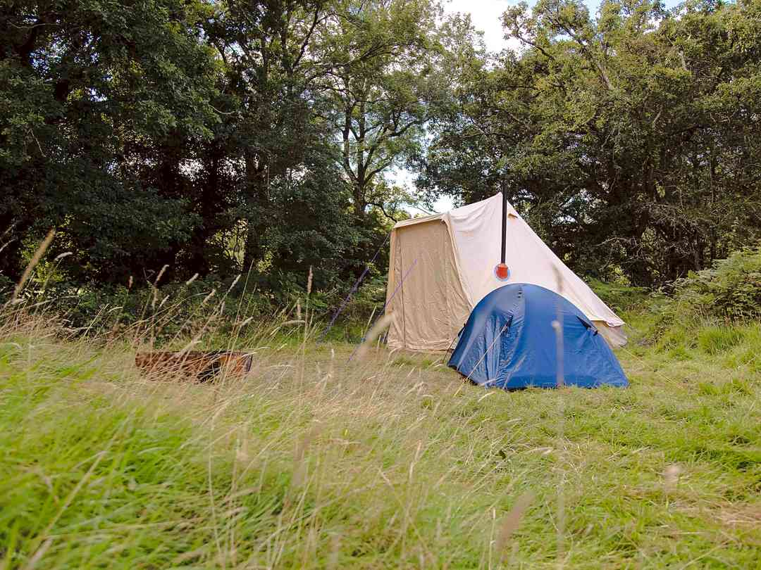 Bush Farm Wild Camping: Pitch up by the river