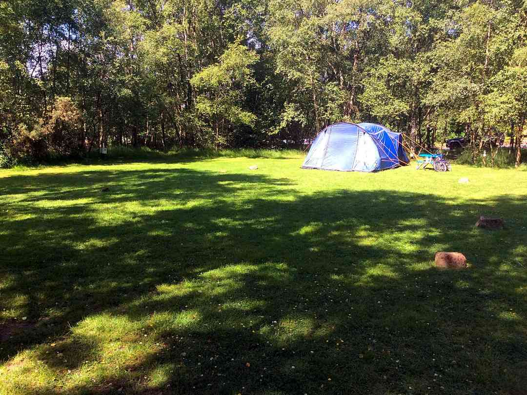 Quarry Walk Camping and Caravan Park