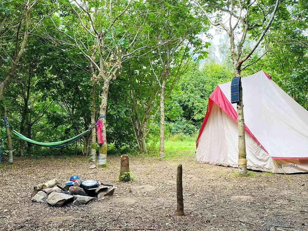 Fire and Stars Woodland Camping: Camp Luna - spacious woodland camping pitch with stone built fire pit