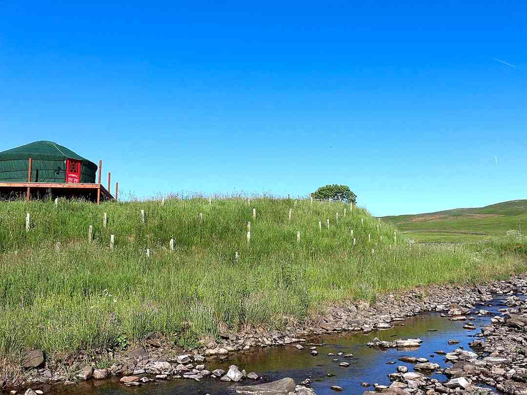 Ettrick Valley Yurts: Yurts and stream