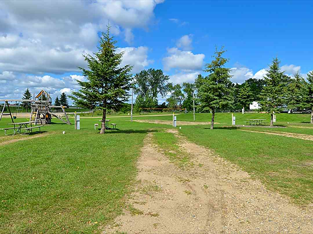Cruise Inn RV Park: Trees around the site