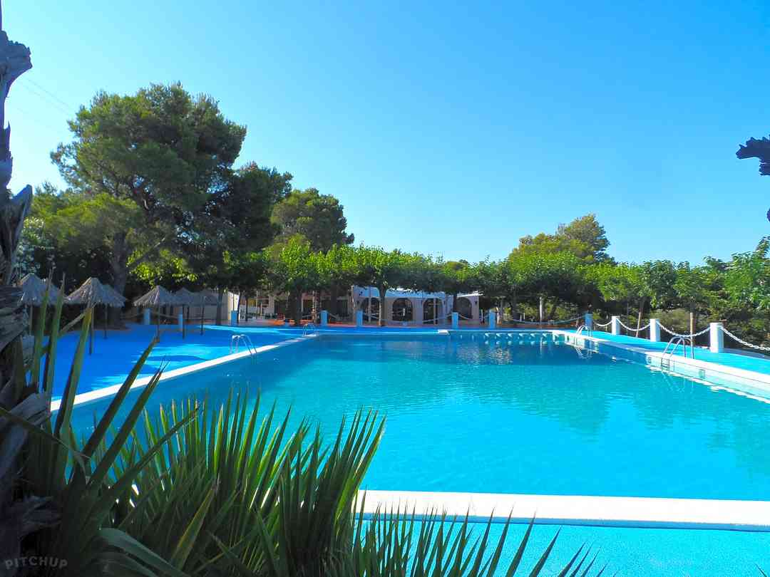 Swimming pool surrounded by trees open all year round