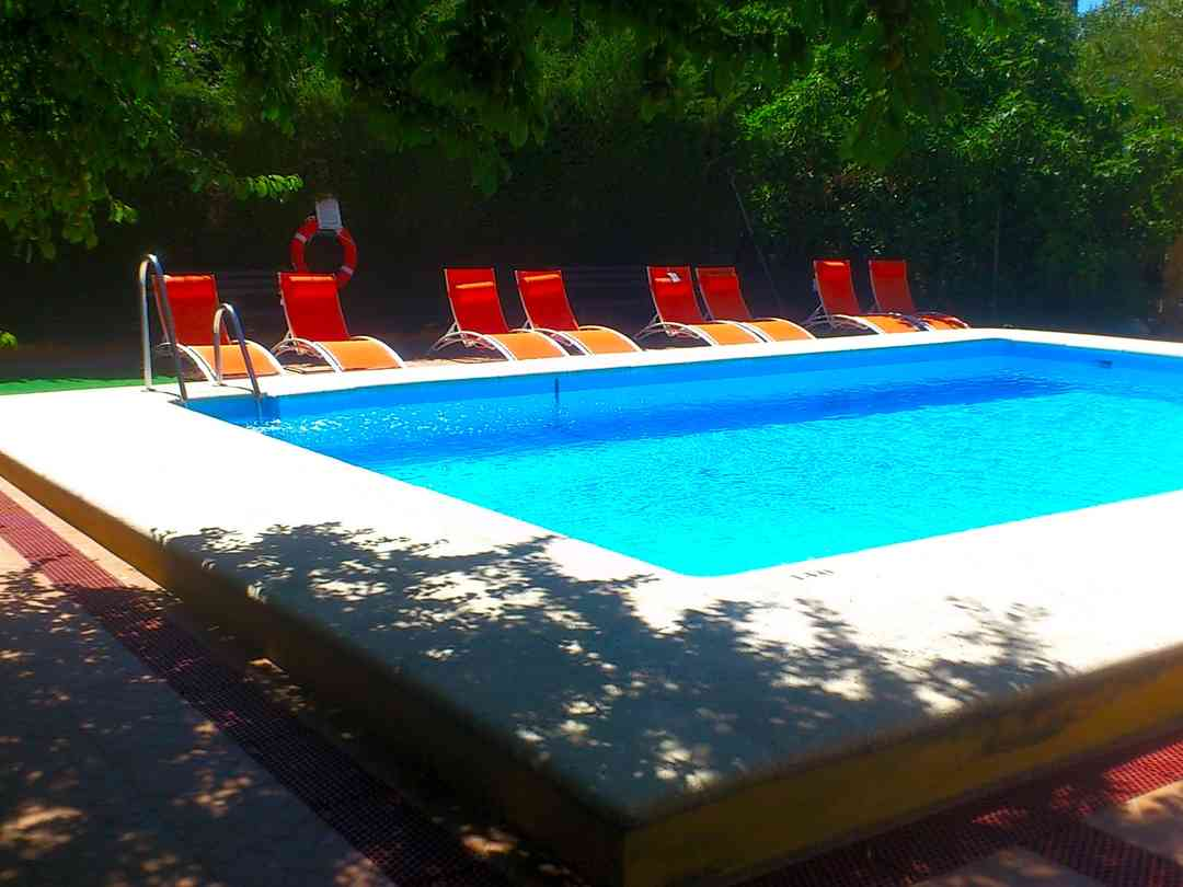 Pool and poolside loungers