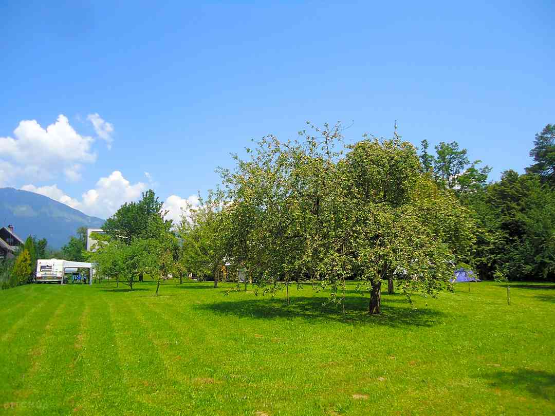 Tourist Farm Hribar