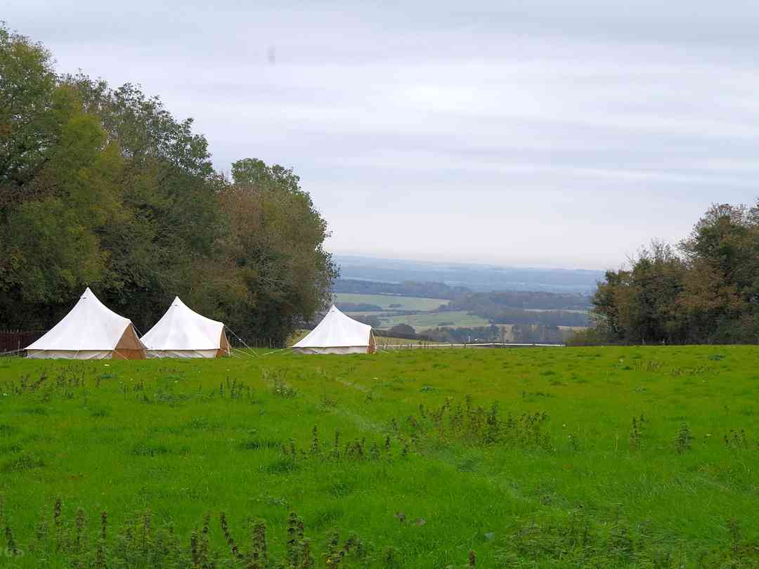 Donkey Down Camping at Culliford Tree: Exterior of the bell tents