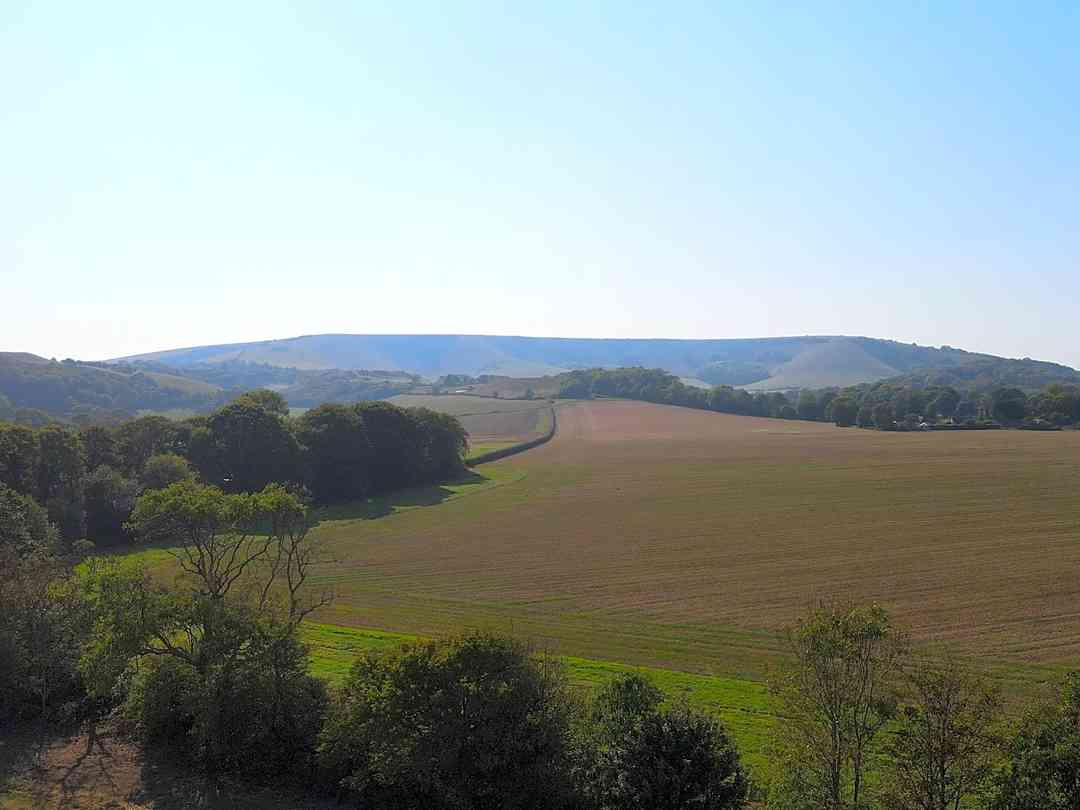 Bramley Park Camping: Views across the South Downs National Park