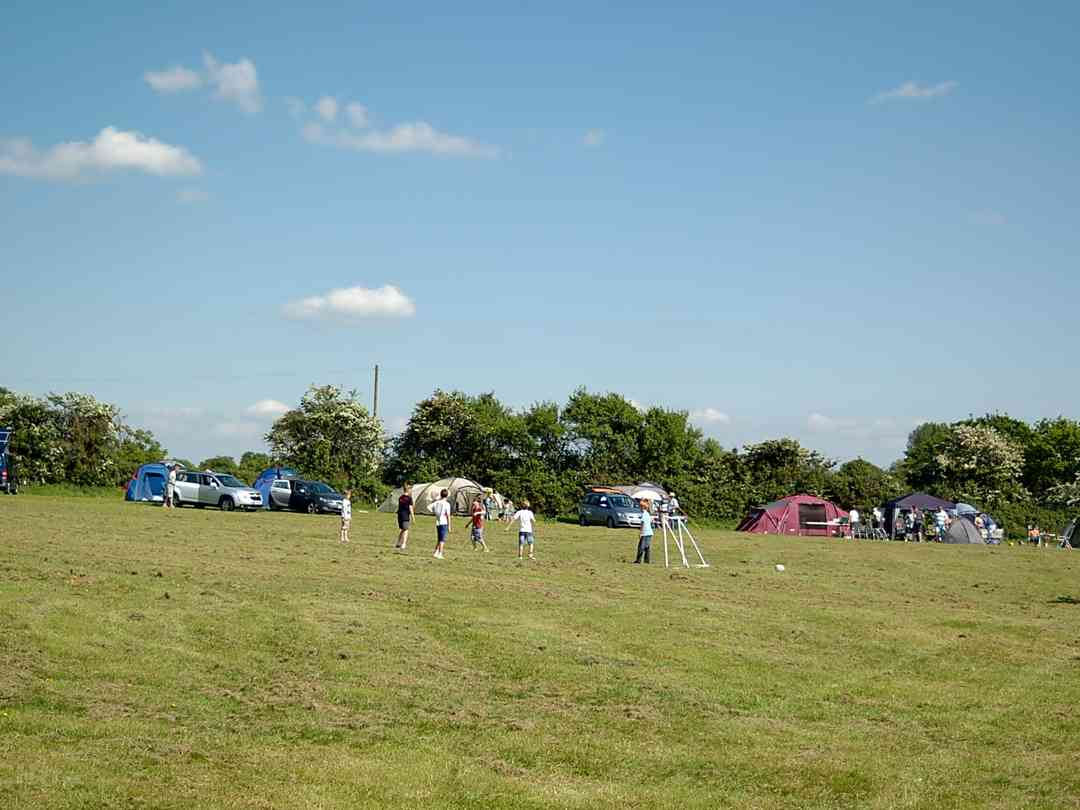 Mousley House Farm Campsite: Spacious pitches
