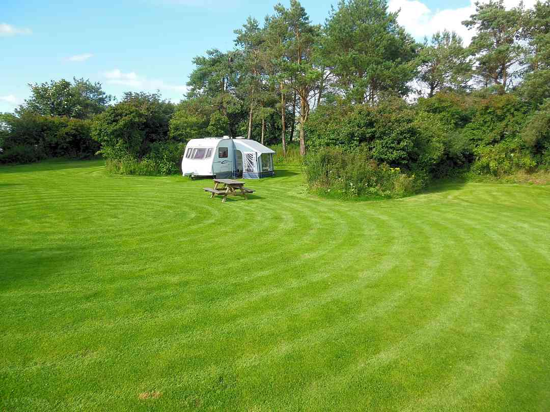Well-kept grass pitches