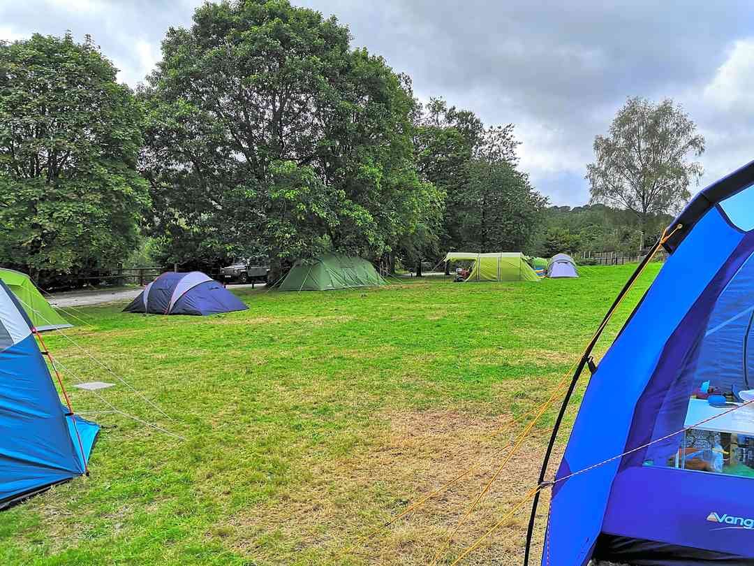 One of the tent pitches.