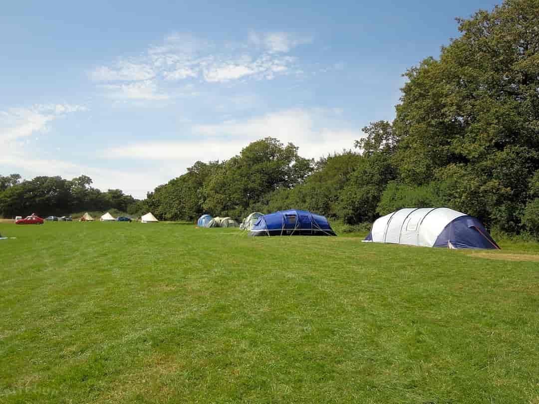 Best Campsites in Surrey 2020 from £14.00 Book 5 Campsites