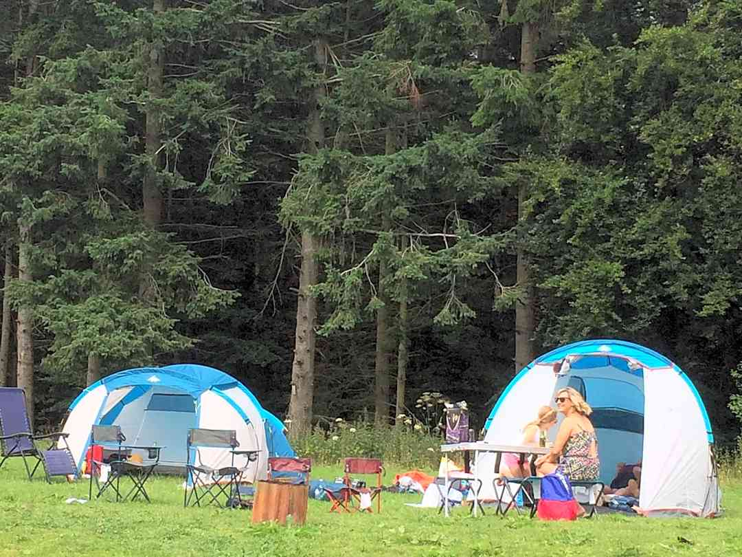 Oaklands Leisure and Fishery: Camping