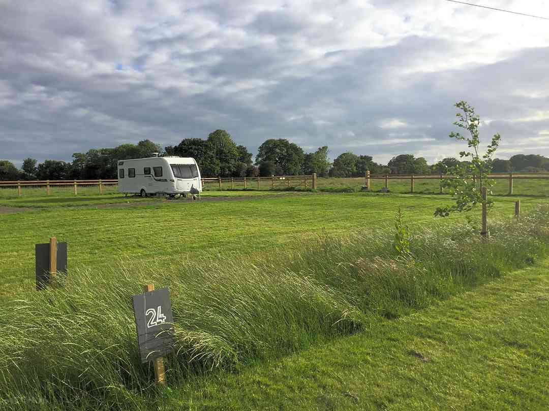 Butt Farm Caravan and Campsite