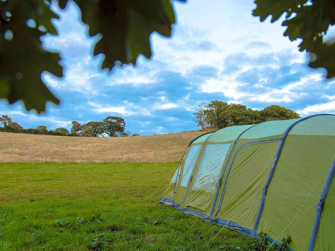 Bush Farm Wild Camping: Views from the site