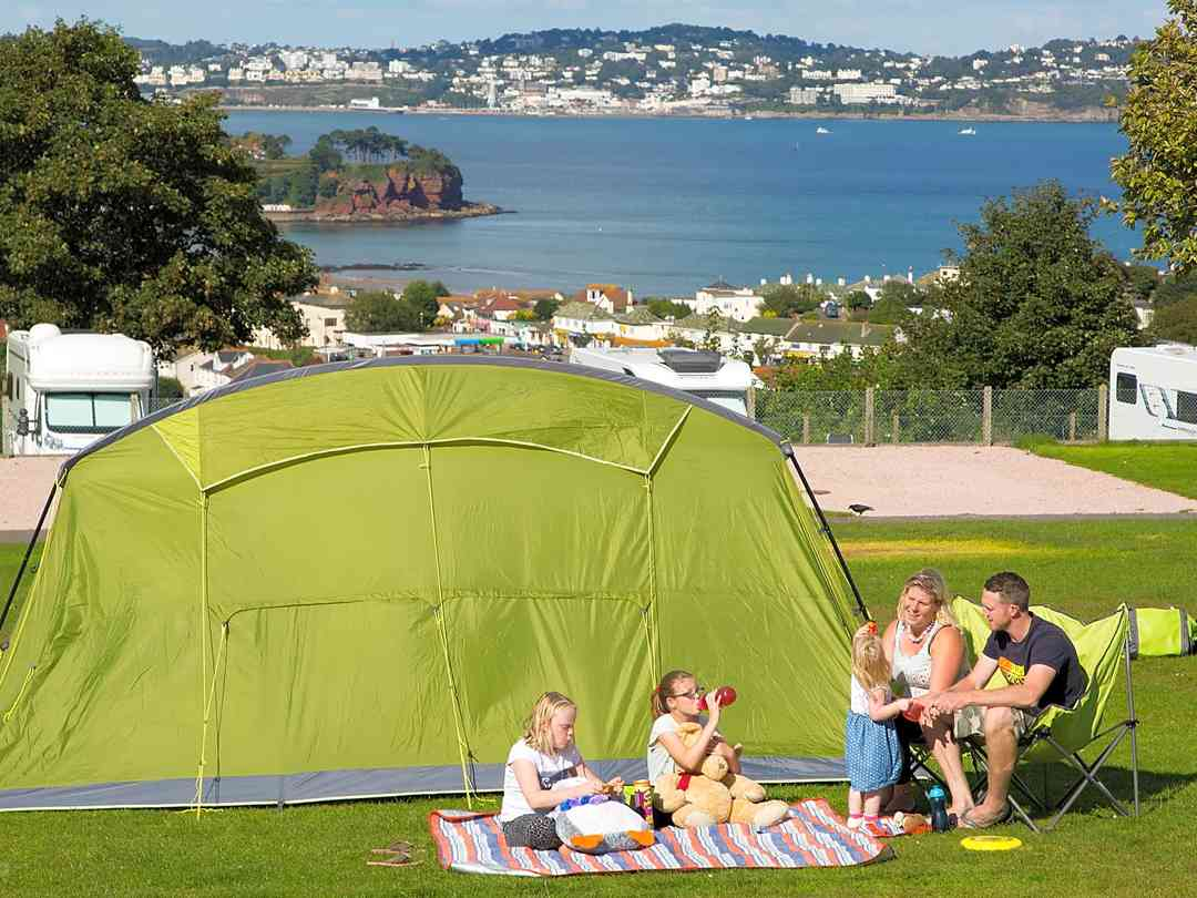 Electric grass tent pitch