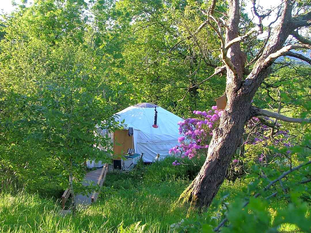 Yurt in a peaceful corner of the farm