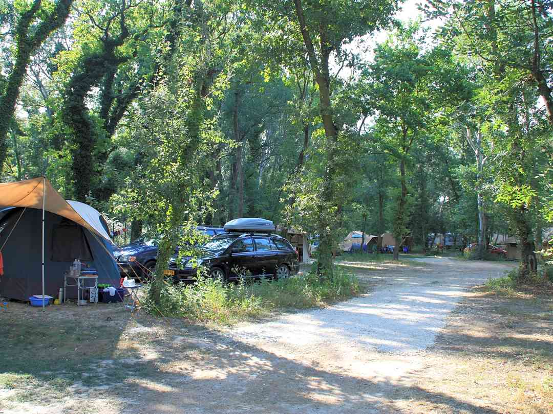 camping vaucluse tente
