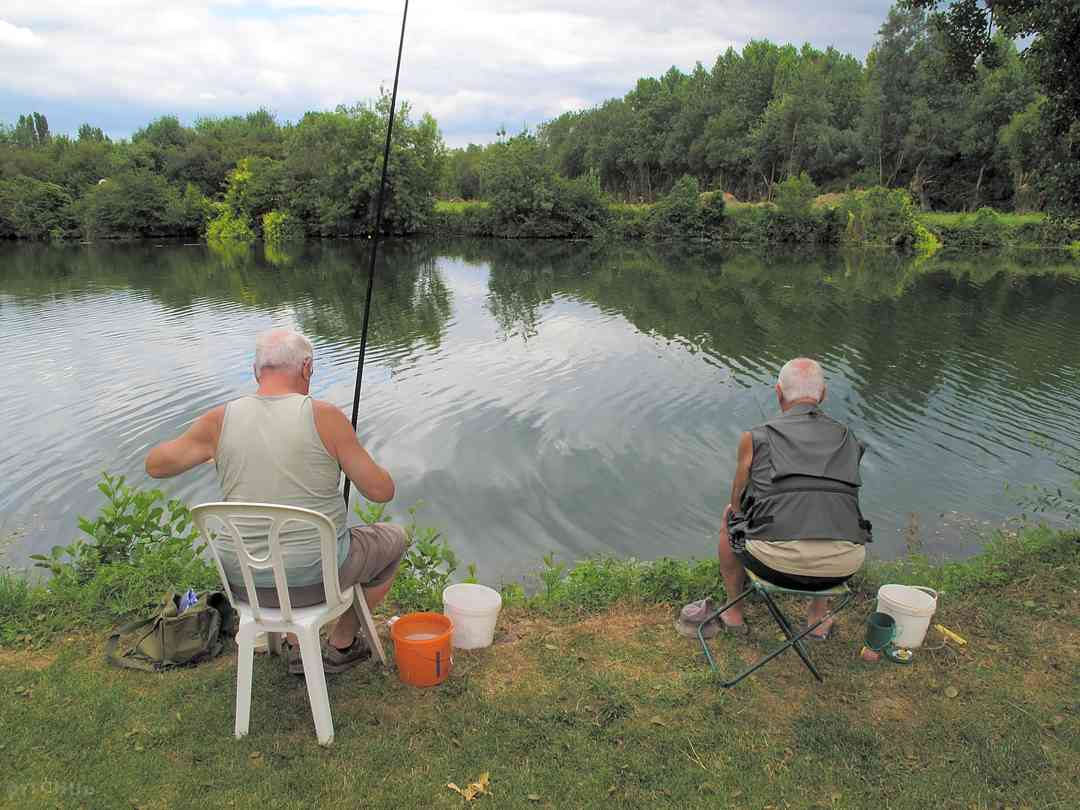 Camping Les Portes de L'Anjou: Fish in the river
