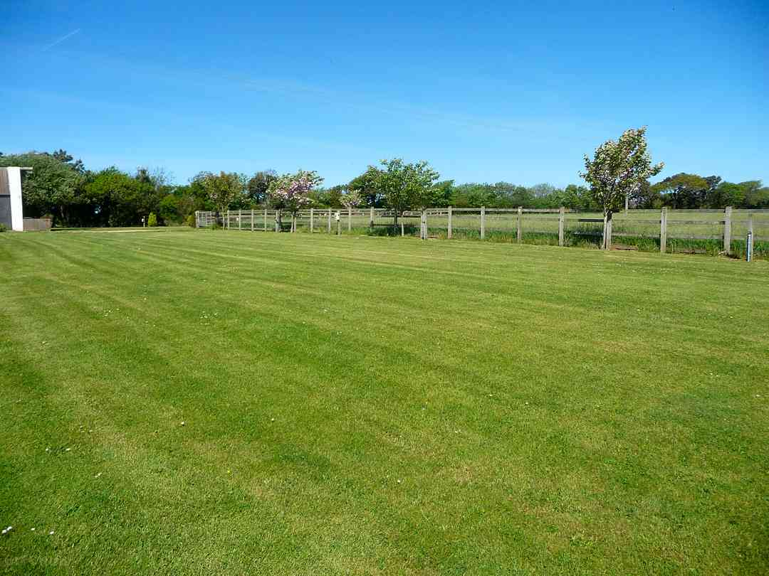 Grassy pitches