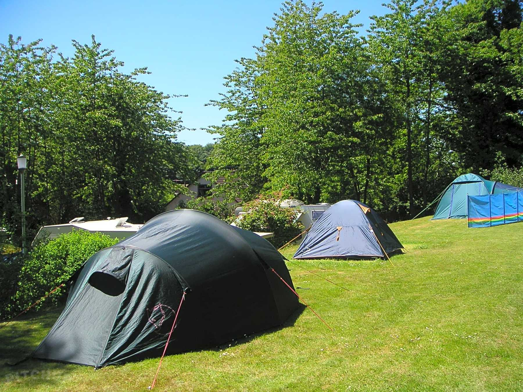 Fossa Caravan and Camping Park, Killarney Oppdaterte