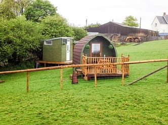 The logpod is situated on a gently sloping area of the farm, in the main alpaca paddock
