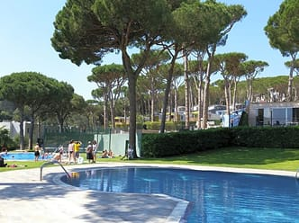 Outdoor pools surrounded by tall trees