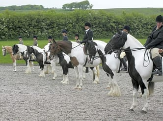 Plenty of horse events to watch during your stay