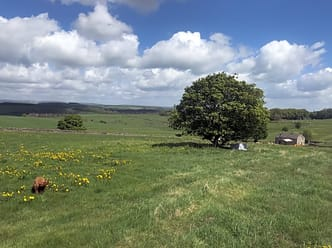 Burrs Manor Campsite, Buxton - Updated 2019 prices - Pitchup®