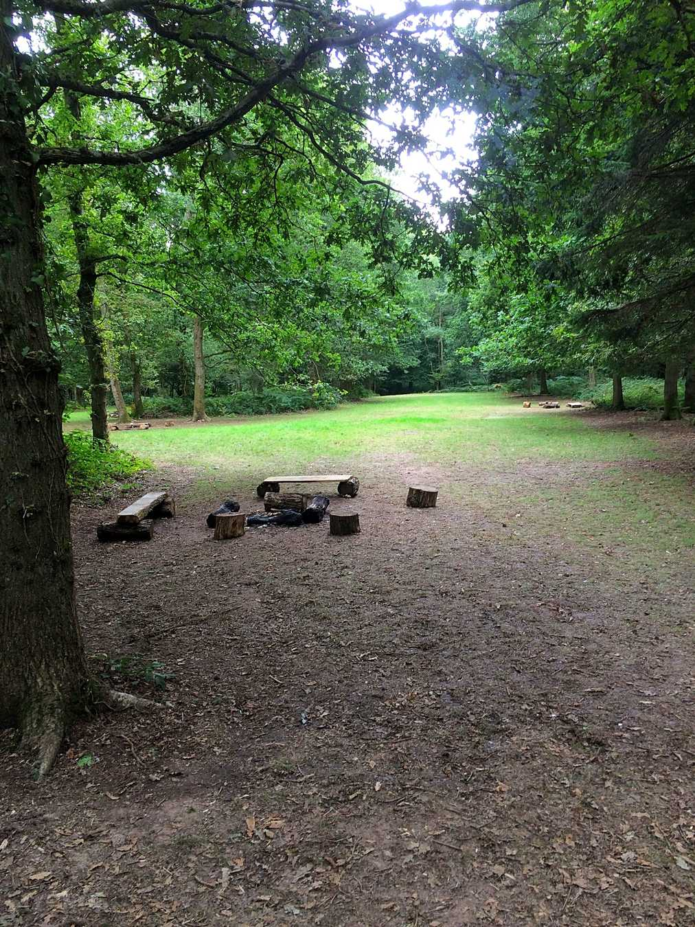 Fox Wood Camping, Worthing - Pitchup®
