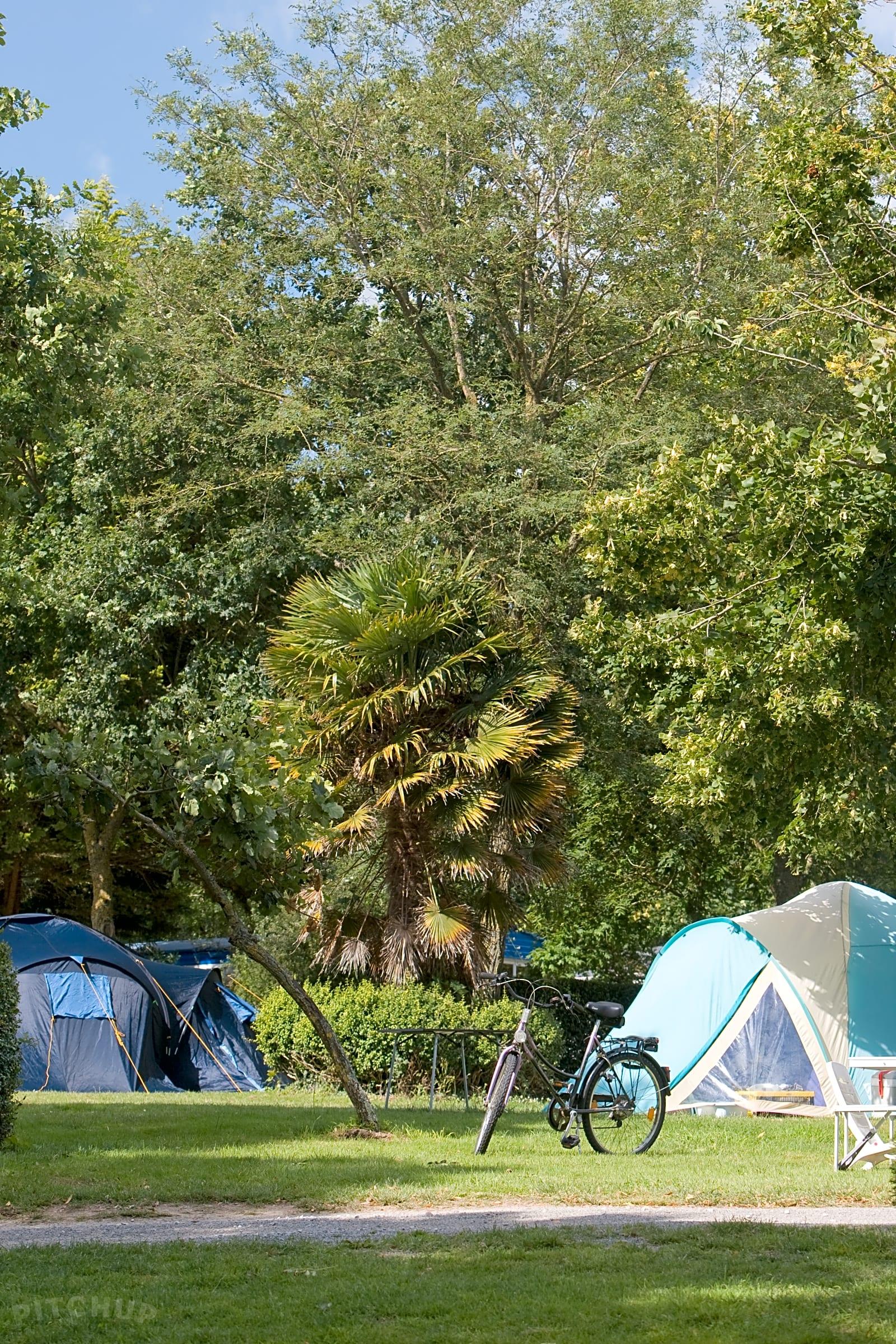 Full branchement camping en Virginie Mark et Kimberly datant