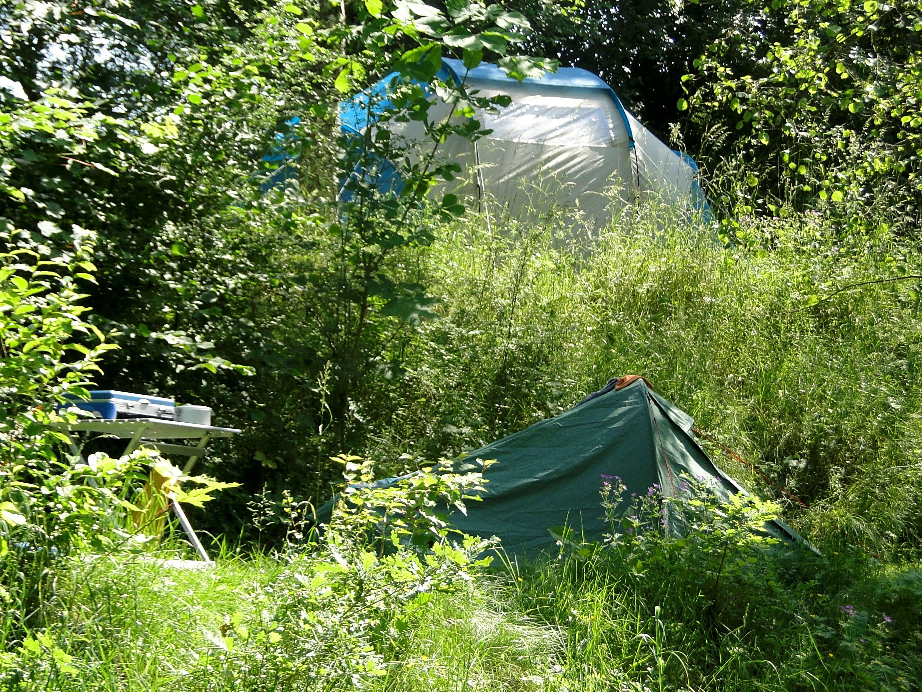 Natur Camping Vulkaneifel, Manderscheid Oppdaterte priser