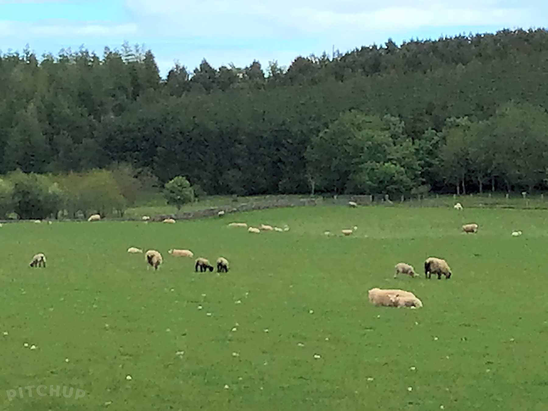 Wild camping | Best Campsites in Brechin, Angus 2021 ...