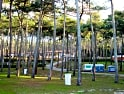 Campsites and holiday parks in Leiria