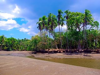 Site located on the southwest coast of Costa Rica on the Pacific Ocean