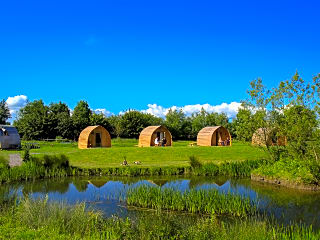 Pods by the pond
