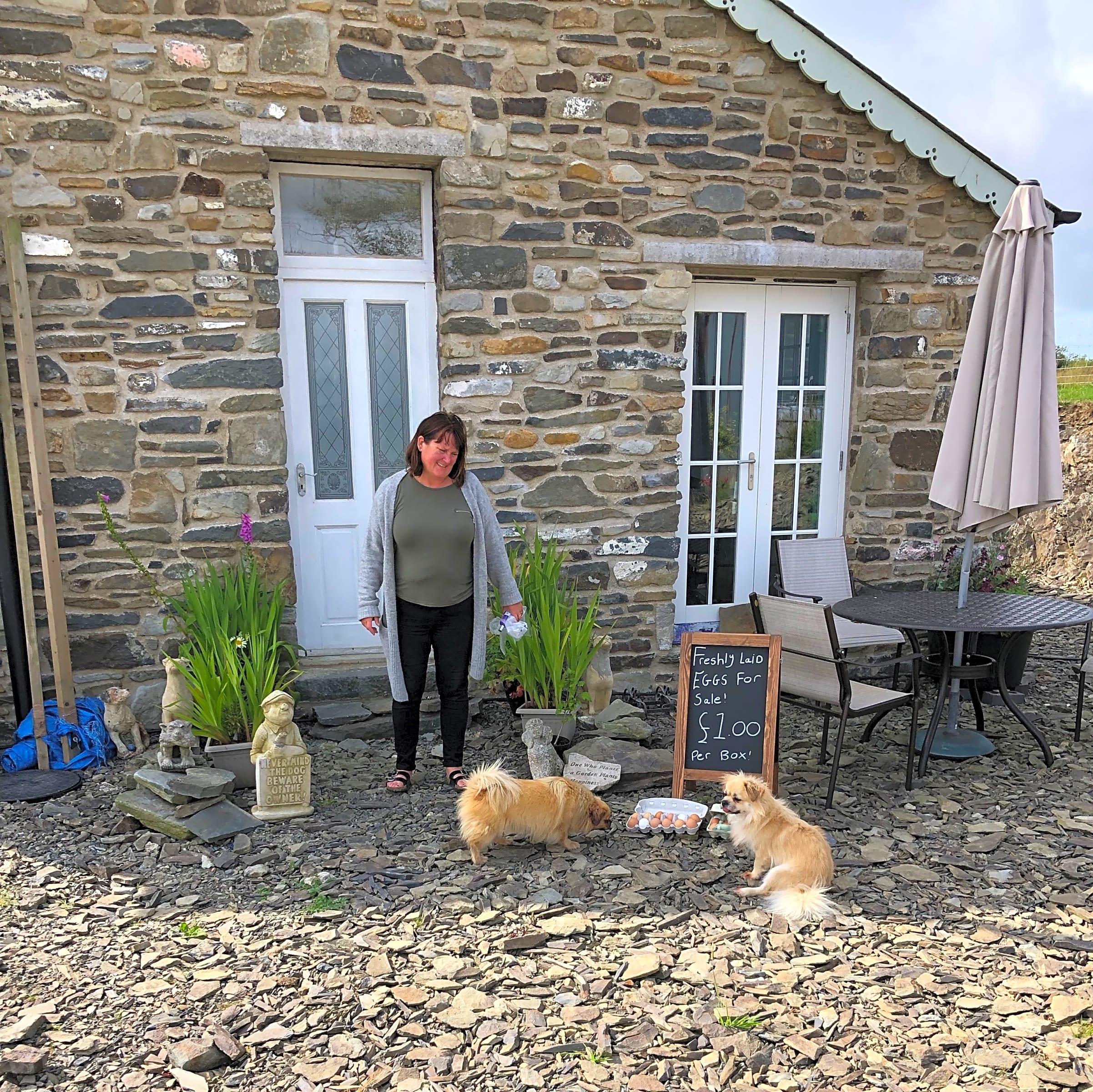 Ffynnonwen Farm Wild Camping, Aberystwyth - Updated 2020 ...