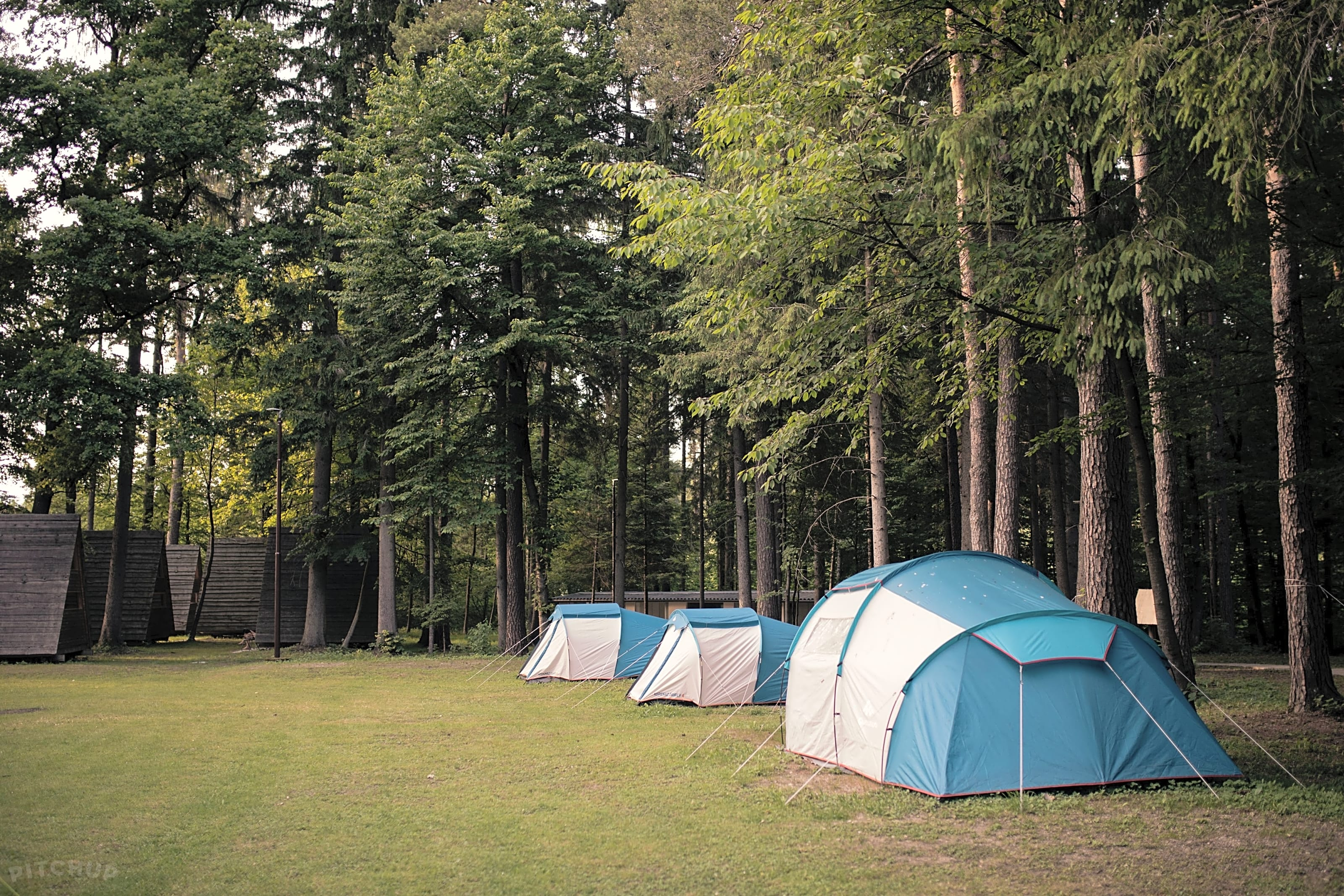 Base Camp Buitenkeuken.Forest Camping Mozirje Mozirje Updated 2019 Prices Pitchup