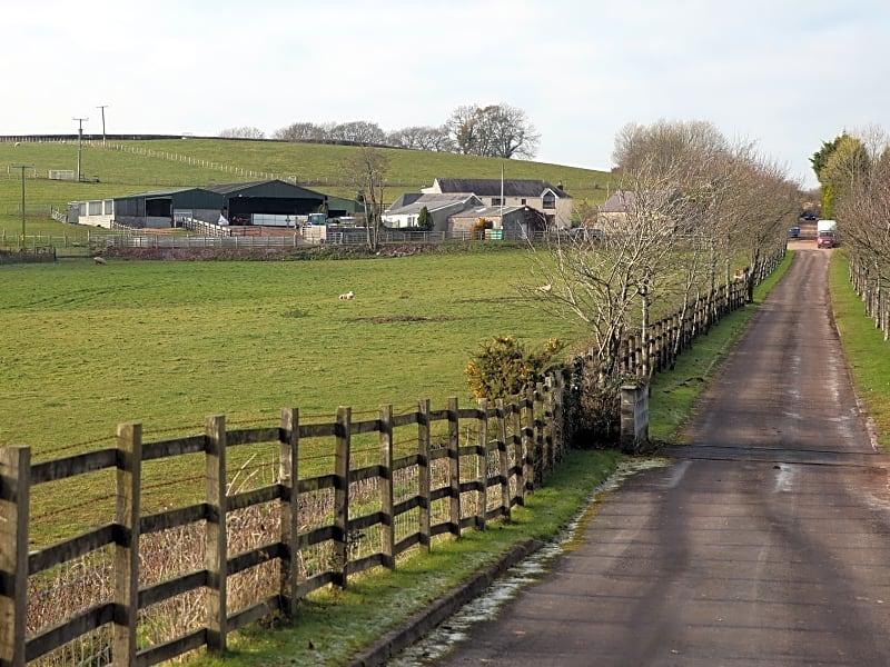 Coedhirion Farm