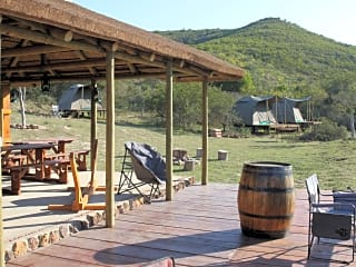 Roll from your tent onto the bar terrace - or the other way round